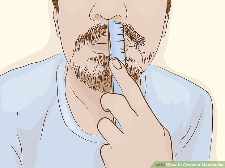 How to Groom a Moustache