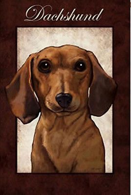Marvelous Decorative Garden Flag   Dachshund   Unique Gifts For Pet Lovers    Pawlished Paws/ Formerly Neiman Barkus