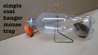 Η πιο ασφαλής ποντικοπαγίδα με... μια κρεμάστρα και ένα πλαστικό μπουκάλι (vid)