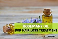 How to use Rosemary Oil for Hair Loss, Hair Fall, Hair Growth #EssentialOils #RosemaryOil Pinned for you by https://organicaromas.com/