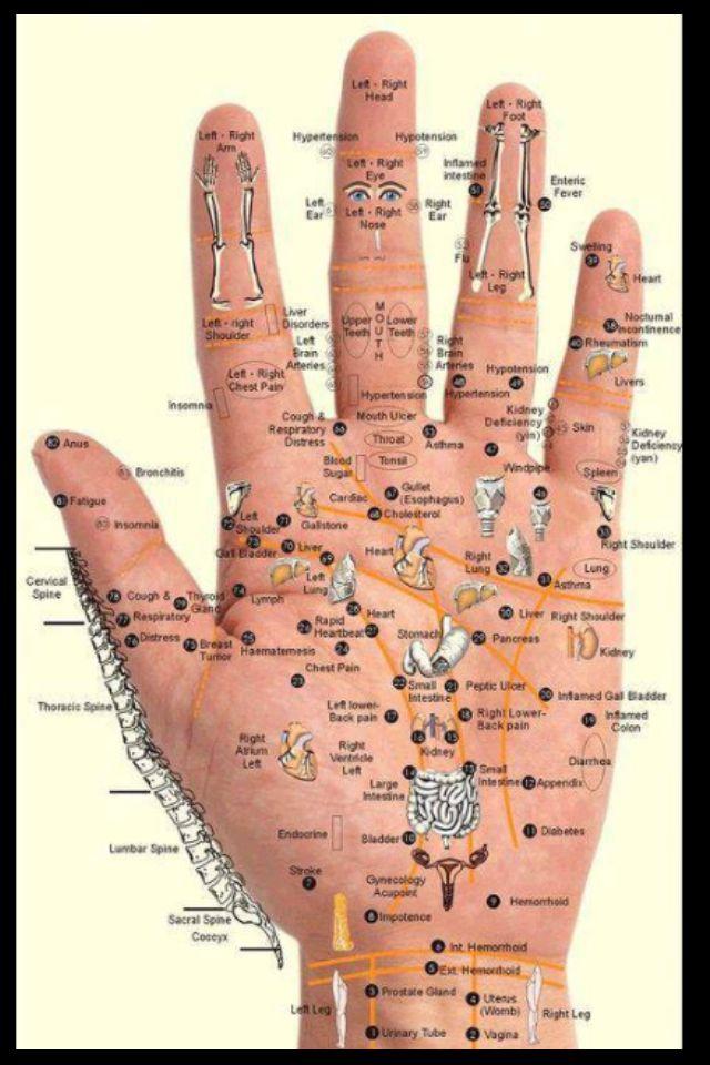 Pressure Points Hand  Hand Reflexology, Reflexology -4734