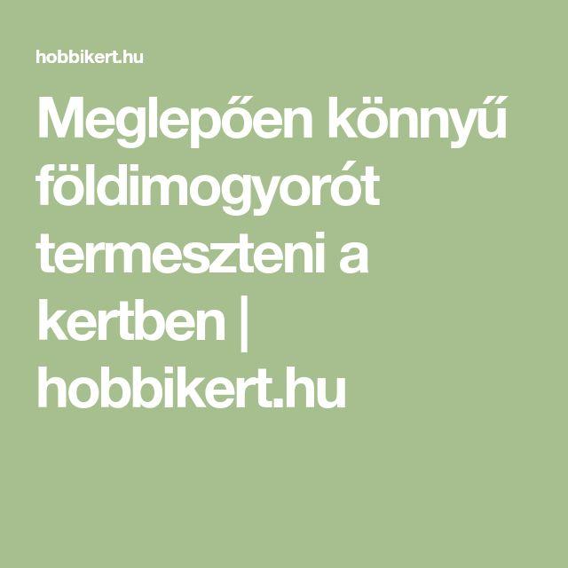 Meglepően könnyű földimogyorót termeszteni a kertben | hobbikert.hu