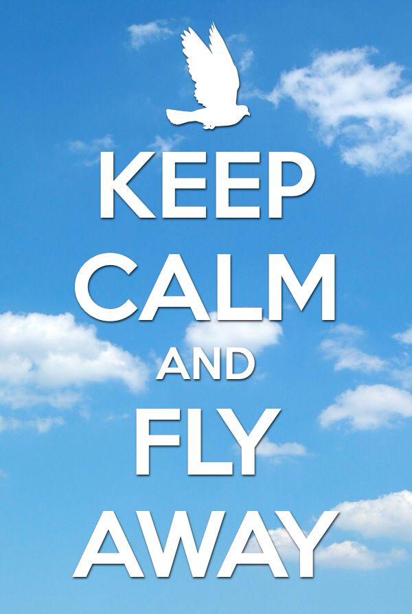 Fly fly fly fly fly away