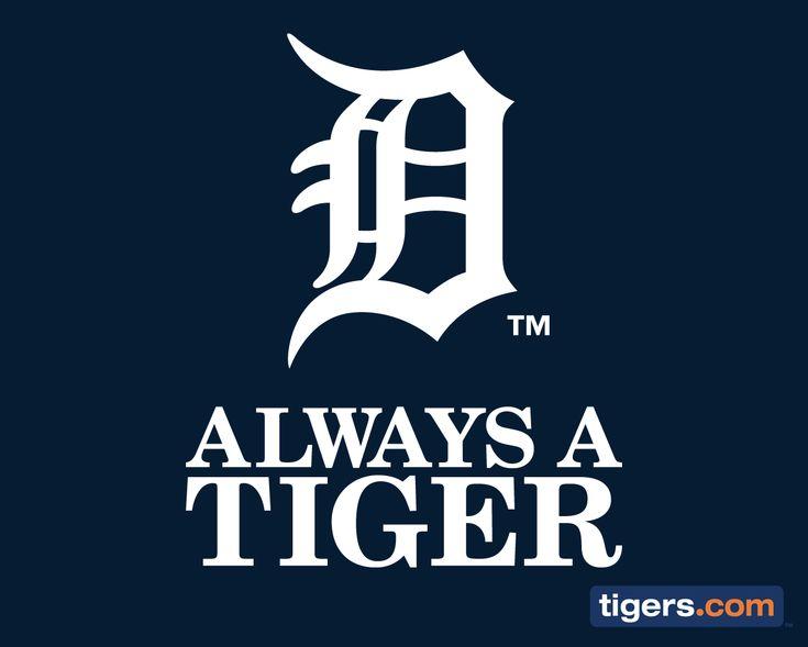 Always, Always, Always a Tiger!!!