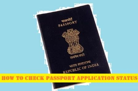 How to Check Passport Application Status Online or Mobile Phone SMS  http://www.applypassportonline.com/