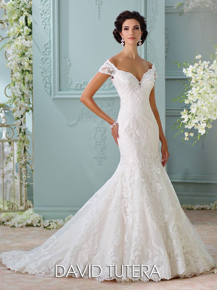 Cute David Tutera Aura All Dressed Up Bridal Gown
