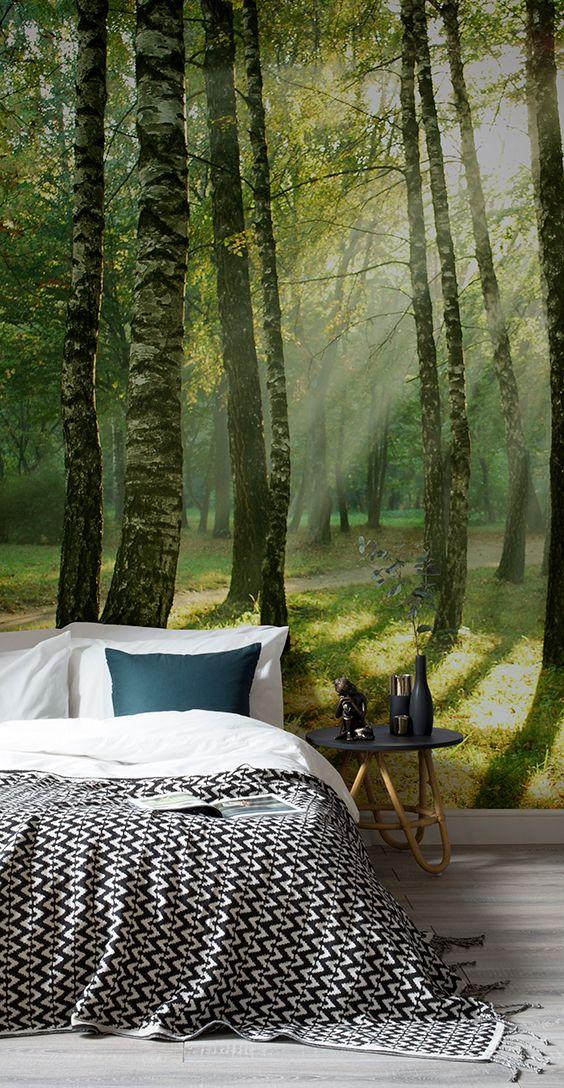 Best 25+ Forest wallpaper ideas on Pinterest | Bedroom wallpaper ...