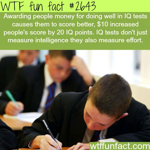 The IQ tests - WTF fun facts