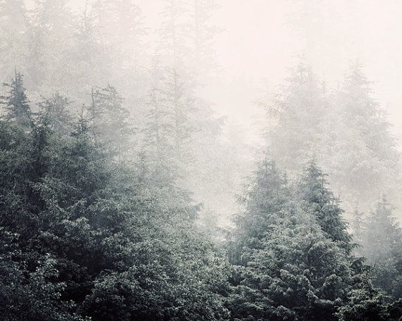 Forest in Fog Landscape Photography Snow by EyePoetryPhotography, $30.00