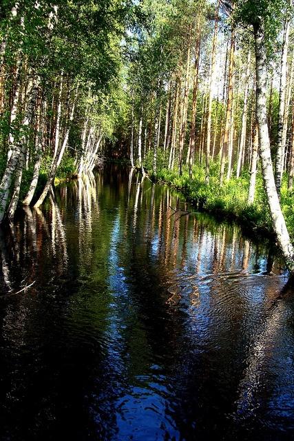 Kissakoski, Hirvensalmi, Finland