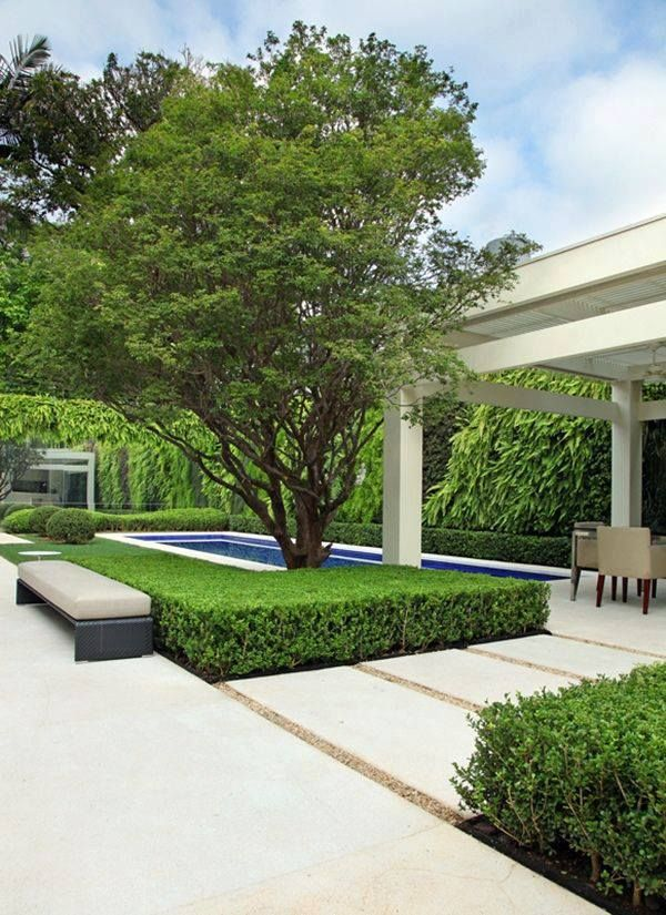 Gyllene proportioner, så perfekt. I love these rectangular blocks of topiary - probably box.