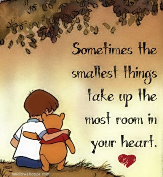 Winnie The Pooh Quotes Sometimes The Smallest Things: Pinterest