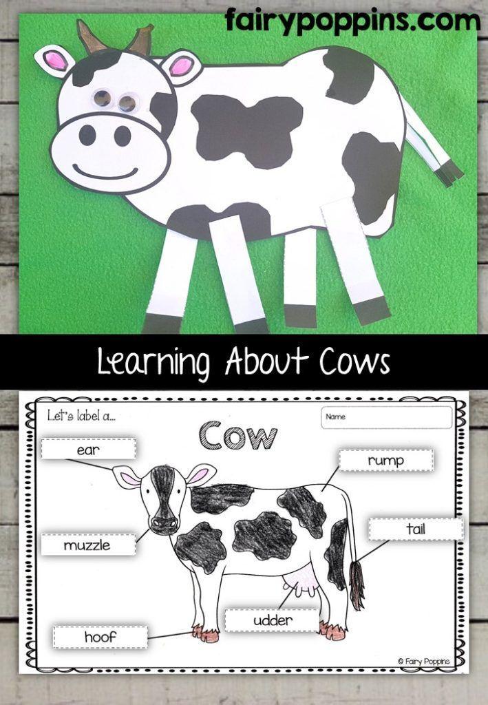 Cow Worksheets For Kindergarten