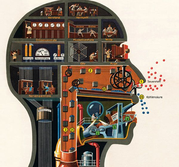 Jewish-German doctor Fritz Kahn (1888-1968) , noted for his daring to explain the workings of the human body in a historical moment marked by the expansion of technology and the interwar period. This context is reflected in his drawings which, through metaphors and analogies, comparing the anatomy with the activity of plant or machinery.