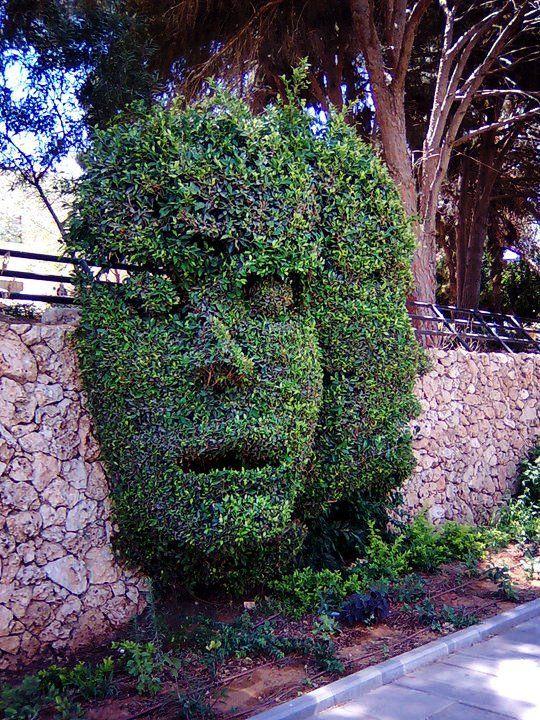 hedge art