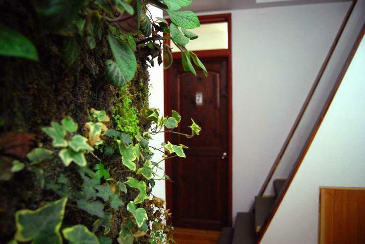Jardín vertical en interiores de hostal.