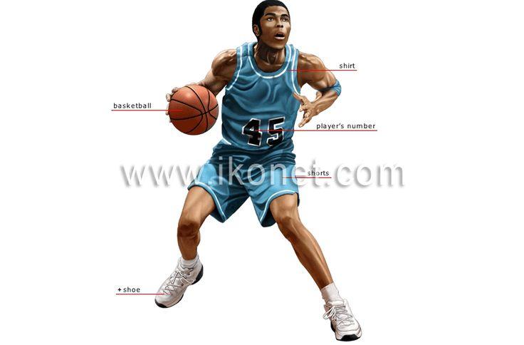 sports and games > ball sports > basketball > basketball player image - Visual Dictionary
