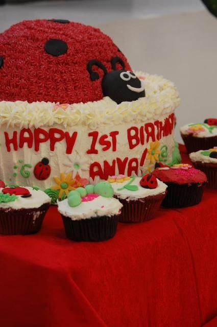 Ladybug Birthday Party Cake