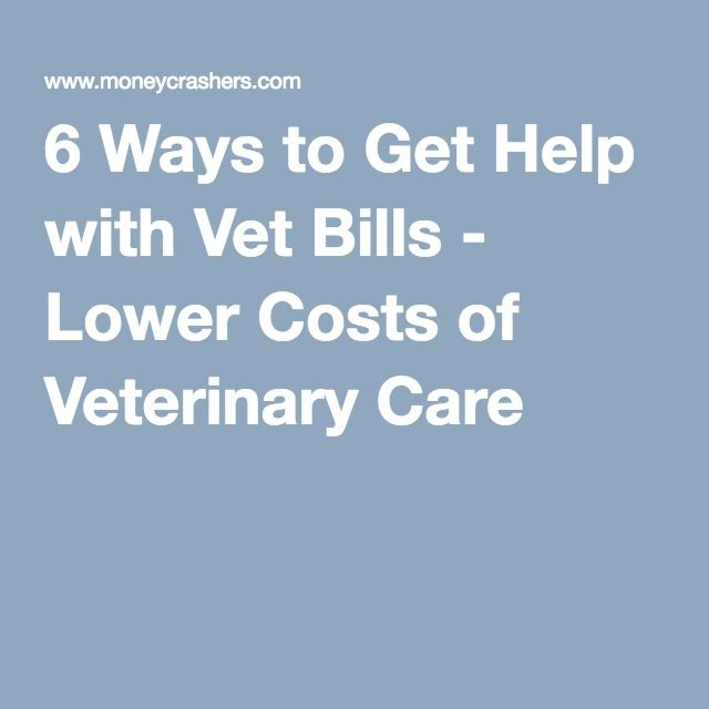 6 Ways to Get Help with Vet Bills - Lower Costs of Veterinary Care