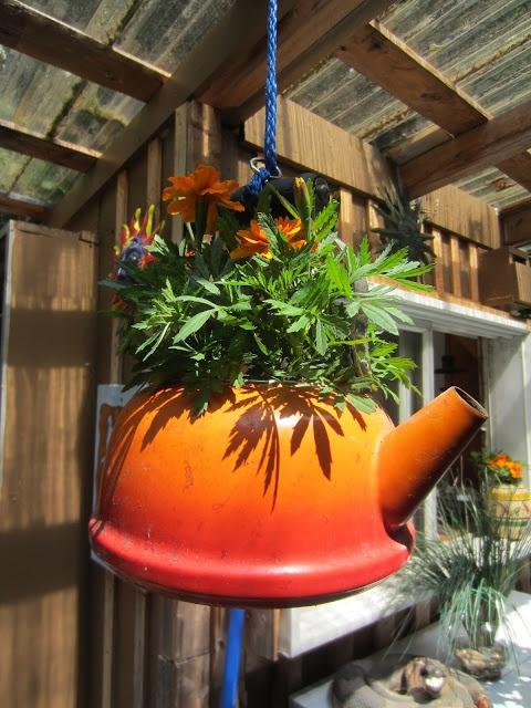 ....the tea kettle flower hanger...