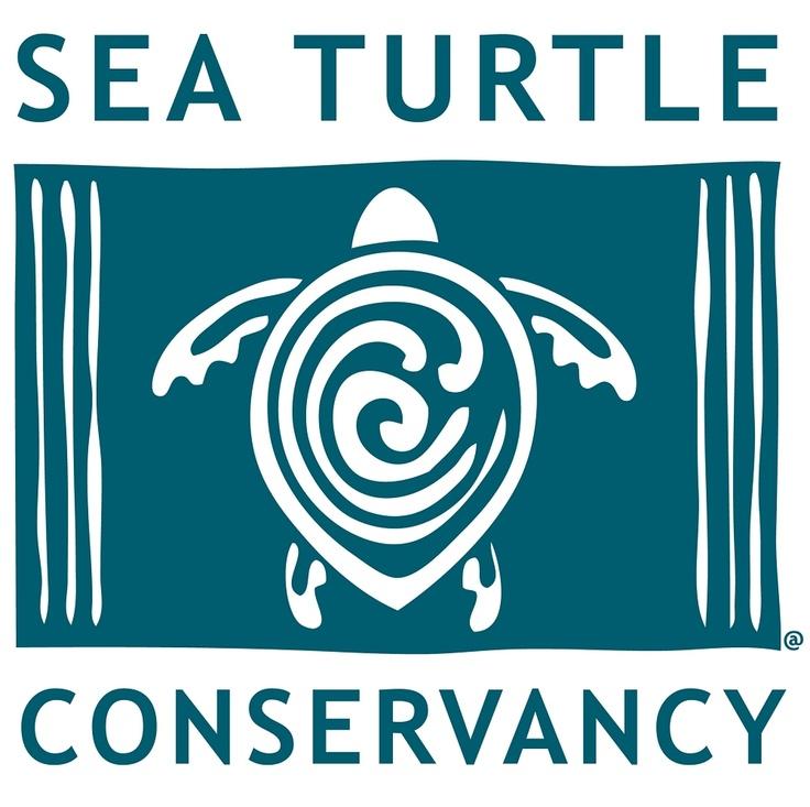 Sea Turtle Conservancy  www.conserveturtles.org/