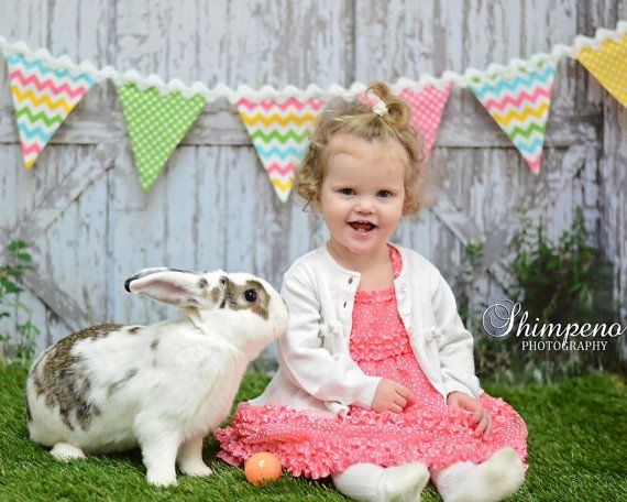 Hey, I found this really awesome Etsy listing at https://www.etsy.com/listing/123635593/easter-banner-garland-in-chevron-and
