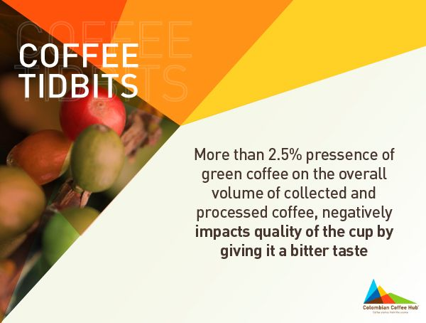 All about coffee quality. Get more info of quality at www.colombiancoffeehub.com