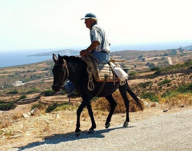donkey ride, lipsi