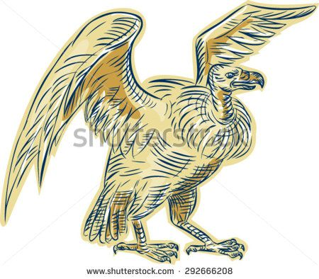 Etching engraving handmade style illustration of a vulture buzzard condor standing viewed from side on isolated white background done in retro style.