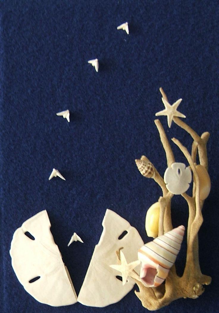 Beach Decor Sand Dollar Dove and Seashell Shadow by CraftyShells