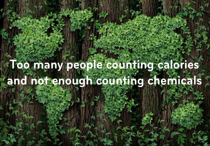 Too many people counting calories, not enough counting chemicals