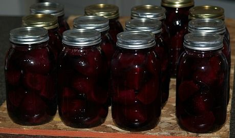 Learn the process of canning beets for simple boiled beets or to make Harvard beets, a pickled recipe plus more and recipes for sauces.