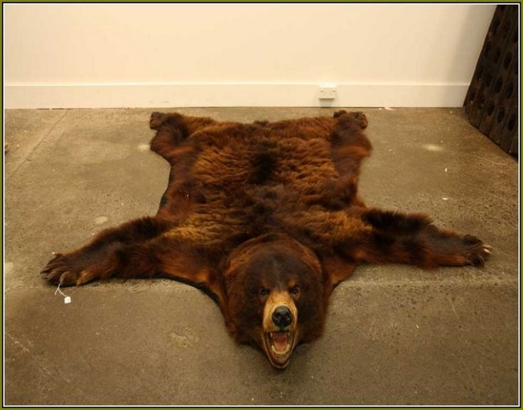 best 25 bear skin rug ideas on pinterest bear rug woodland room and woodland nursery. Black Bedroom Furniture Sets. Home Design Ideas