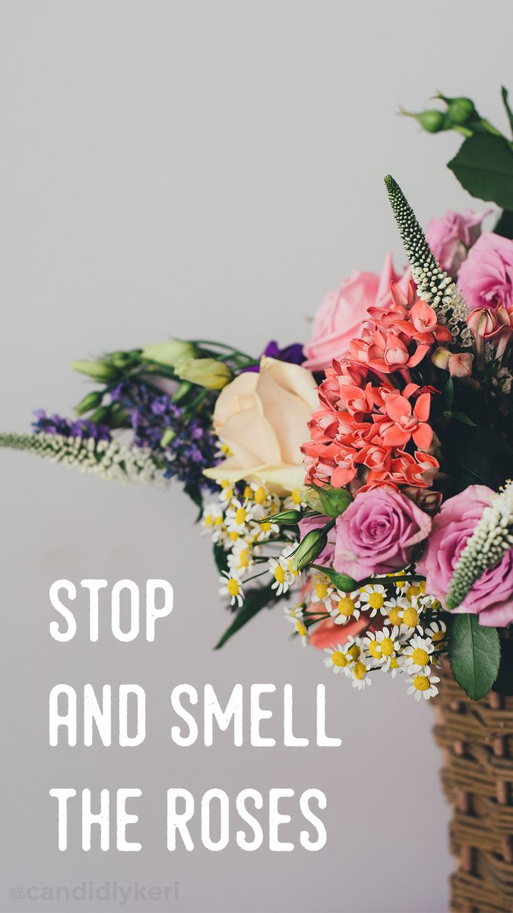"""Stop and smell the roses"" cute floral flower quote inspirational background wallpaper you can download for free on the blog! For any device; mobile, desktop, iphone, android!"
