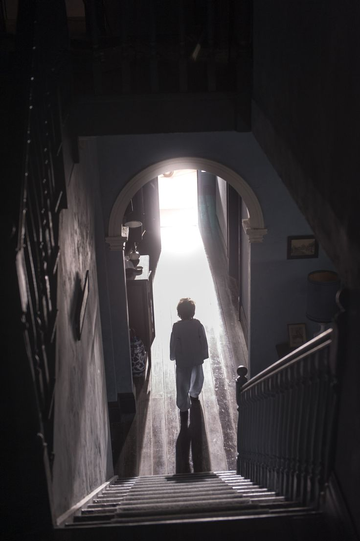 43 best The Babadook images on Pinterest | Horror films ...