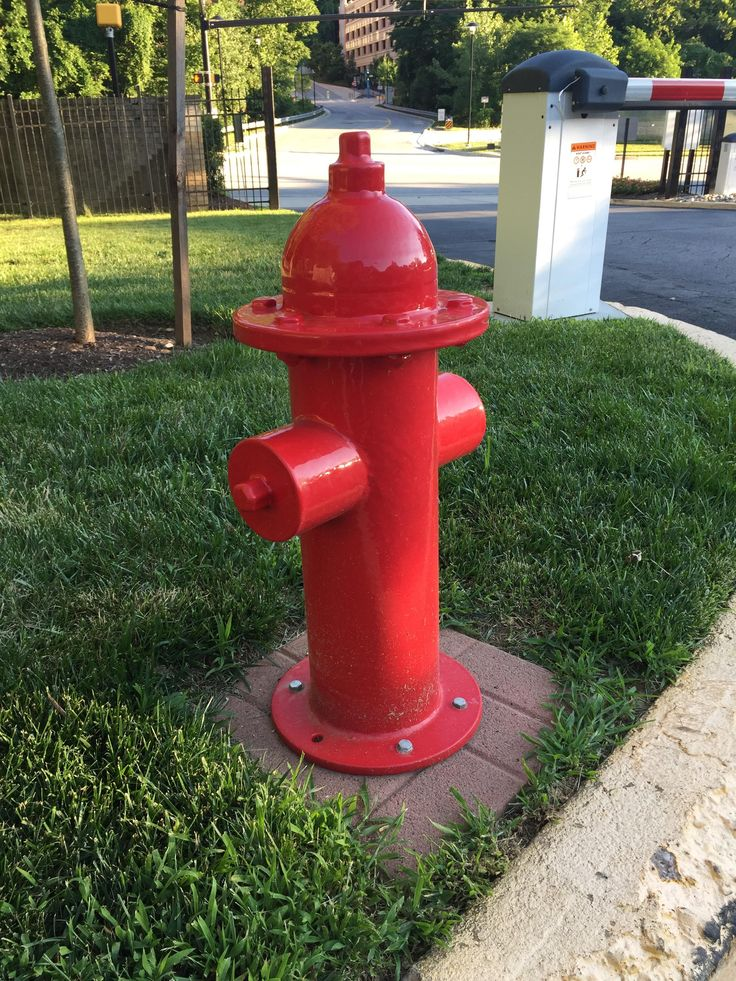 This Fake Fire Hydrant Made For Dogs To Pee On Business