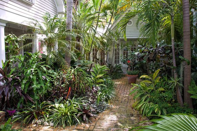 14 best tropical garden ideas melbourne images on for Garden ideas melbourne