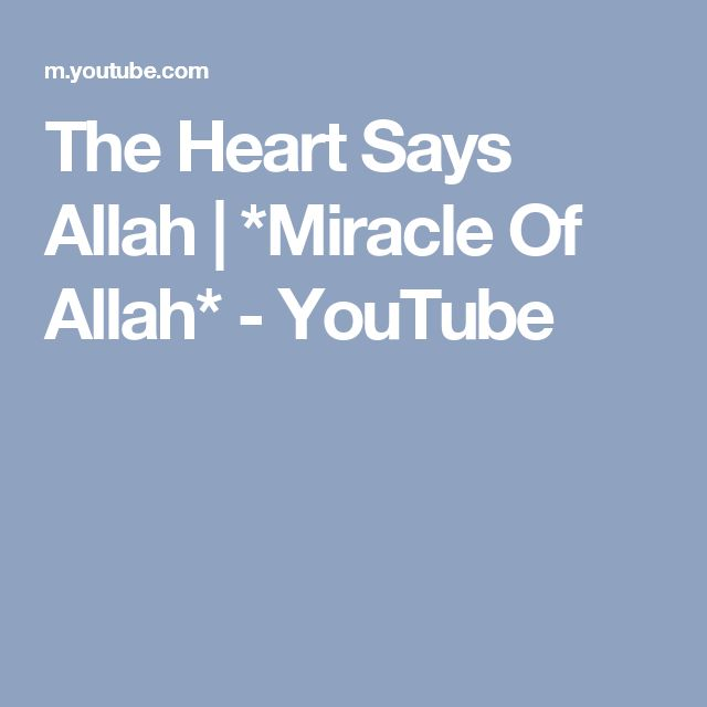 The Heart Says Allah | *Miracle Of Allah* - YouTube