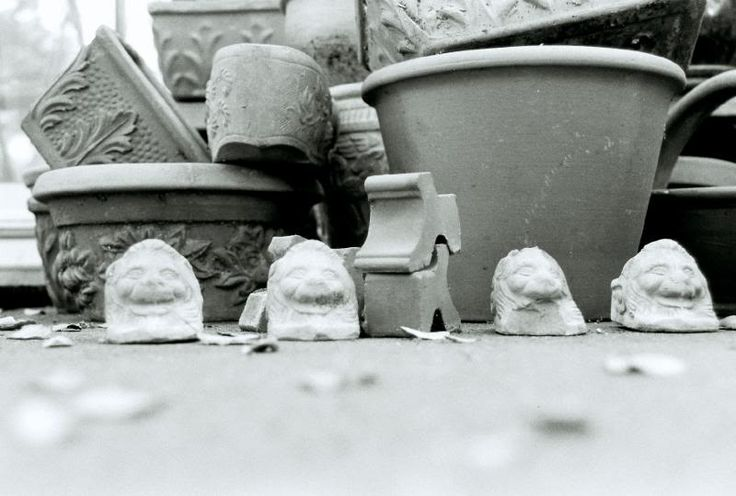 A Row of Flower Pot Lions spotted in a Garden in Tiburon, California, USA