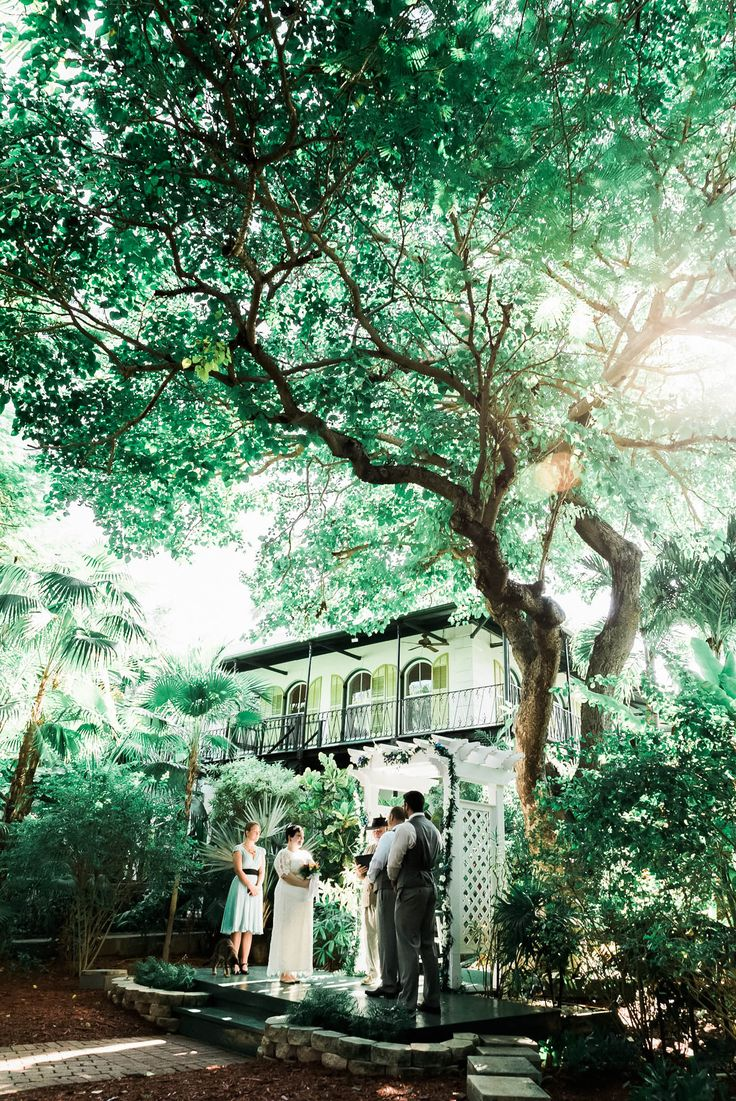 A Vintage wedding at the Hemingway House in Key West, Florida