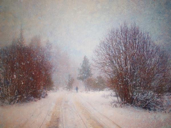 The Man in the Snowstorm - Tara Turner: Going Somewhere Eventually, Tara Turner, Bc Canada