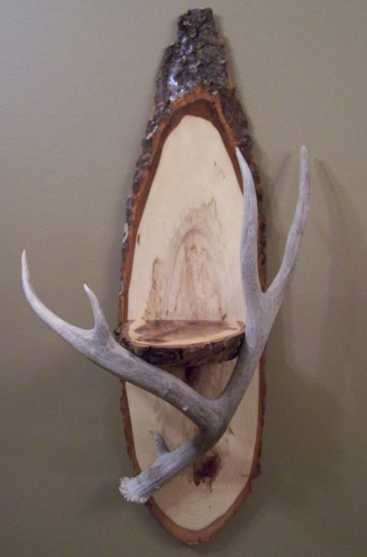 I am making this my brother is a tree cuter have a nice for Deer antler craft ideas