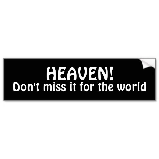 Dont miss it for the world bumper sticker