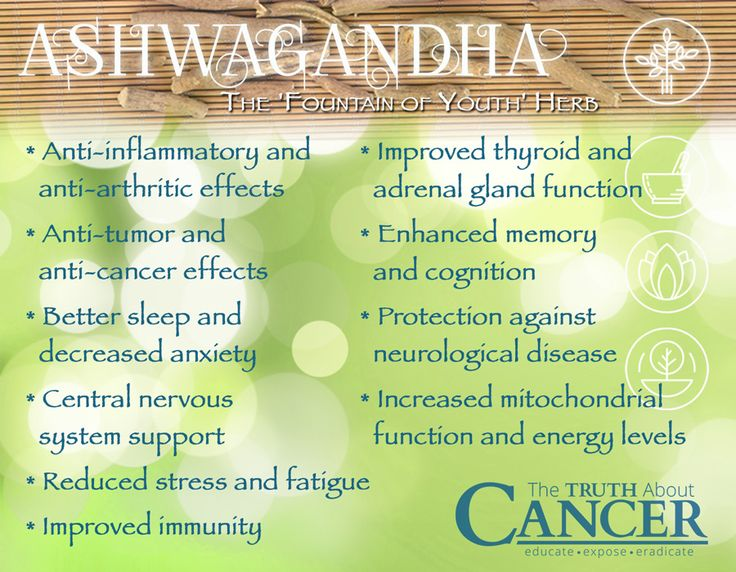 """Have you heard of ashwagandha? Click on the image and discover the life-extending """"miracle"""" herb that's one of the most comprehensive healing substances known to man."""