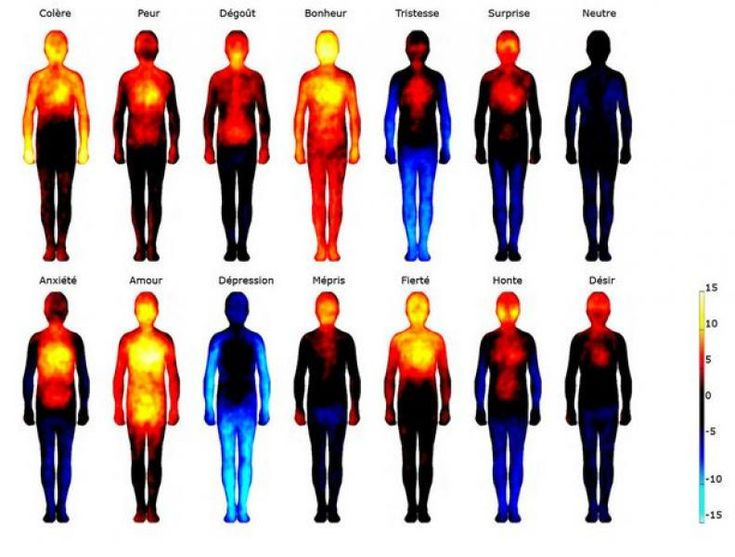 Peur, colère, bonheur : découvrez la carte corporelle de nos émotions