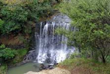 Mokoroa waterfall, Goldie Bush Scenic Reserve