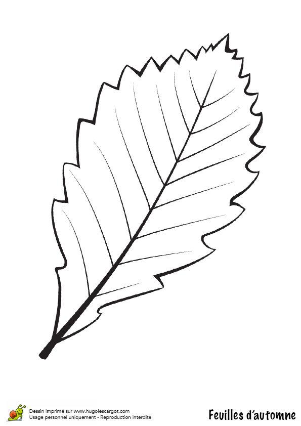 Les 44 meilleures images propos de coloriages dessins d 39 automne sur pinterest belle - Feuille automne dessin ...