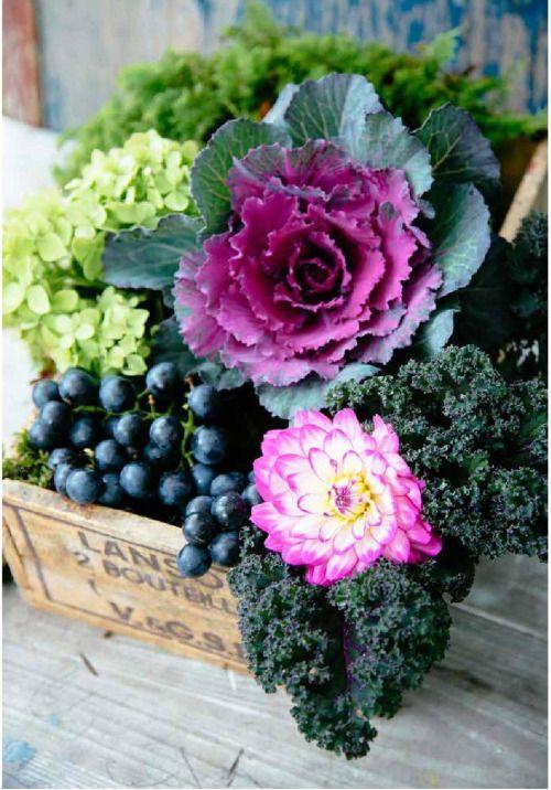 17 migliori idee su decorazioni da giardino su pinterest - Idee decorazioni giardino ...