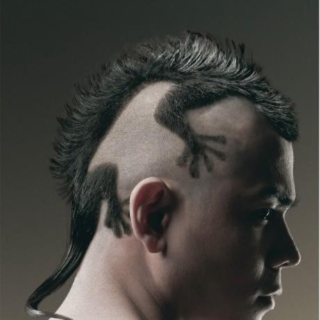 Animal Hair, i am not doing this on any of my boys but holy hell, that is a talented hairstylist to buzz that up. WORD