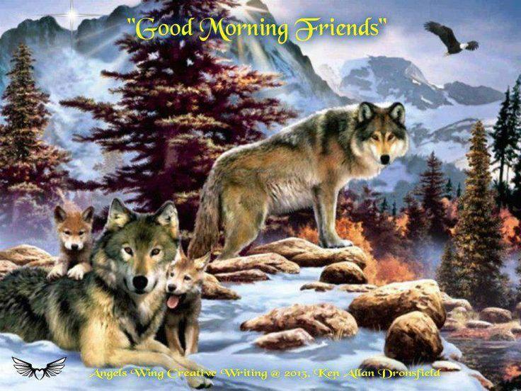 good morning, friends :) | Wolves/Huskies | Pinterest